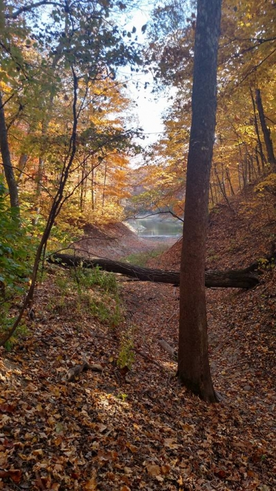 Chief Illini Trail near Lone Point. Photo by Mike Mitchell.
