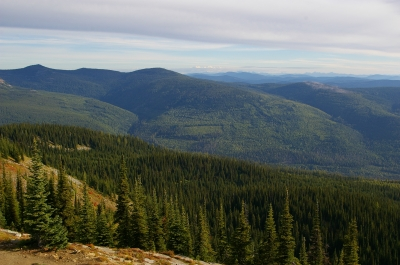 View from Baldy Lookout. Photo by Wade Moats/USFS.