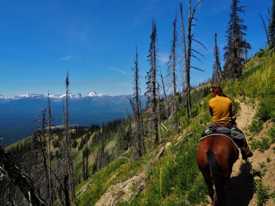 USFS employee trail crew. The horse, Lucky, has worked for the USFS more than 10 yrs. Photo by Fischer Gangemi.