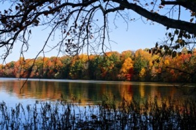 Fall lake view. Photo by Friends of BLNC.