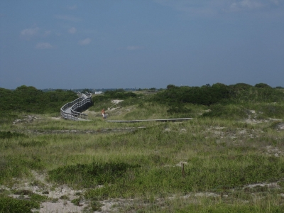 Fire Island Widerness View East. Photo by Stevan.