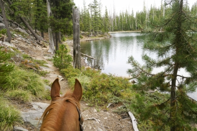 In the Many Lakes Basin, on the Metolius-Windigo Trail. Photo by Kim McCarrel.