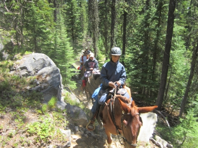 East Cascade Back Country Horsemen trail clearing volunteers. Photo by Linda Thomas.