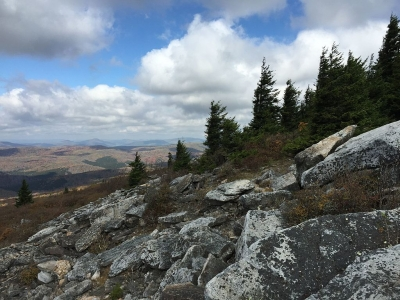 View north from the Whispering Spruce Trail just west of Spruce Knob, West Virginia. Photo by Famartin.
