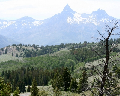 https://www.stateparks.com/beartooth_loop_national_recreation_trail_in_wyoming.html. Photo by Wyoming State Parks.
