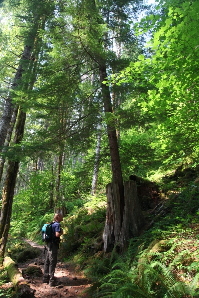 Hiking on Lena Lake National Recreation Trail. Photo by Nikki Yancey.