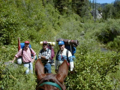 A group of hikers meet a horseman on the trail. Photo by USDA Forest Service Staff.
