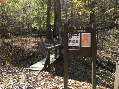 The lower portion of the trail dips into the forest at McCann Springs. Photo by Donna Kridelbaugh.