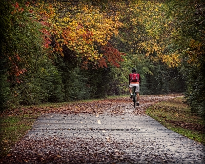 A bicyclist on a beautiful autumn day. Photo by Clara Williams.