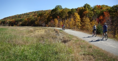 Surface Reclamation. A mine dump formerly occupied this area. Photo by Mary Shaw.