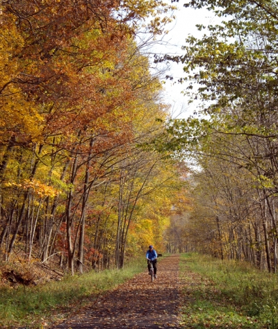 Trail in autumn. Photo by Mary Shaw.