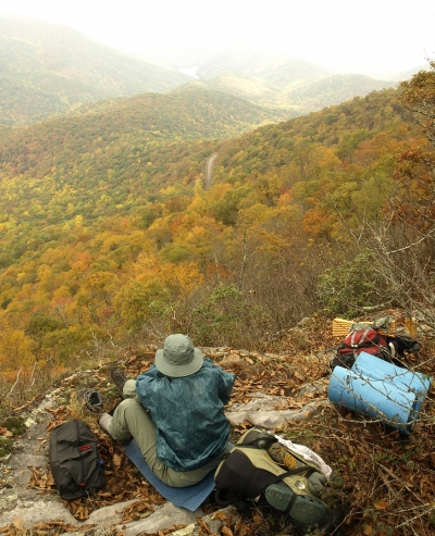 Overlook near Lane Pinnacle, a peak east of Asheville, NC during peak fall foliage. Photo by Matt Mutel.