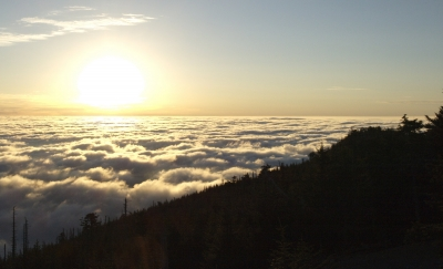 Taken near the summit of Mt. Mitchell, the highest peak east of the Mississippi River. Photo by Matt Mutel.