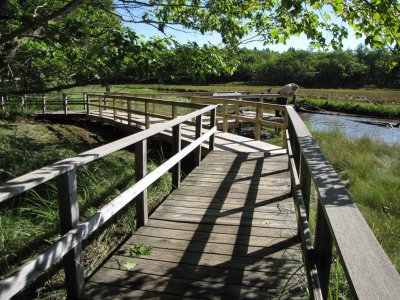 This Hurricane Sandy recovery project repaired damages to a section of boardwalk on the Carson Trail. Photo by USFS.
