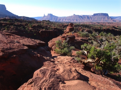 View from the Fisher Towers trail. Photo by Valerie A. Russo.