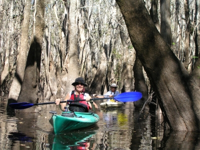 Paddlers in Tupelo Swamp.