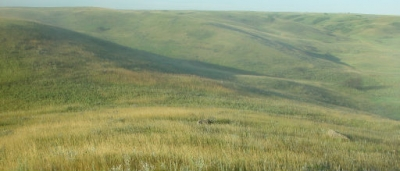 Grassland hills and prairie. Photo by USFWS.