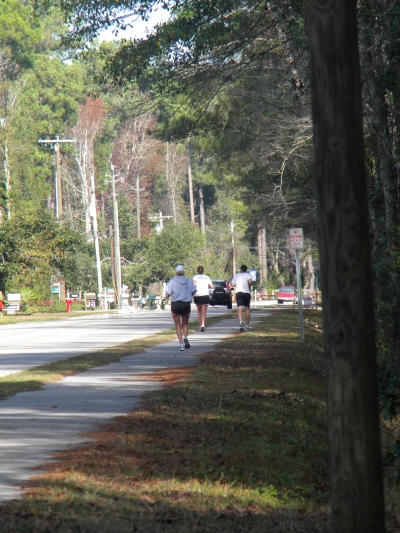 Runners on trail. Photo by Sherry Sullivan.