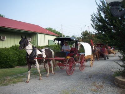Horse and Buggy Days. Photo by Beth McCreless.