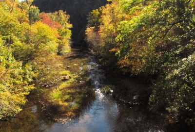 The river below with all of the fall colors in full glory. Photo by John H. Morgan, III.