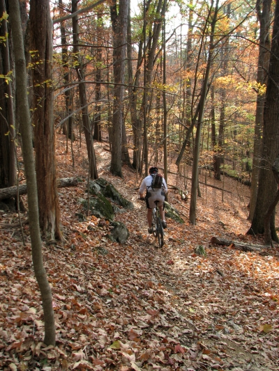 Mountain biker on trail. Photo by Warriors' Path State Park.
