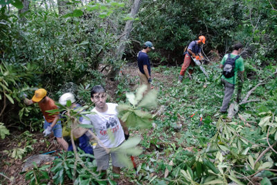 Volunteers clearing trail.