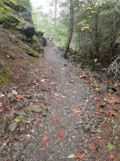 Quarry trail-steeper section.