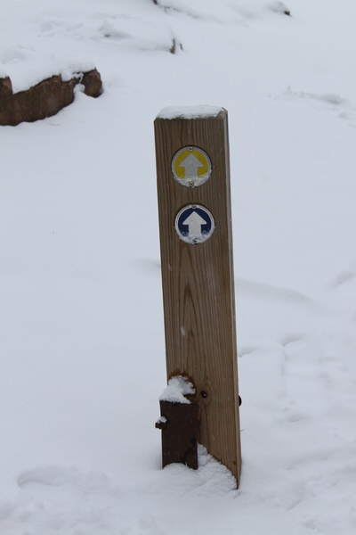 Trail marker in the snow.