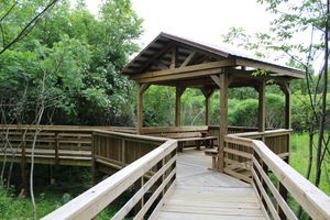 One of two shaded overlooks on the Fort River Birding and Nature Trail.