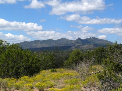 Frijolito Loop Trail passes through the Pinon-Juniper woodland and offers expansive views of the surrounding area. Photo by Sally King courtesy NPS.