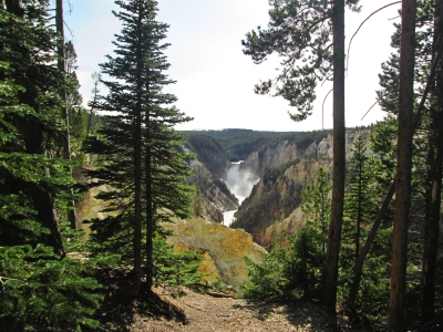 View from the South Rim Trail, near Artist's Point, Yellowstone National Park. Photo by Valerie A. Russo.