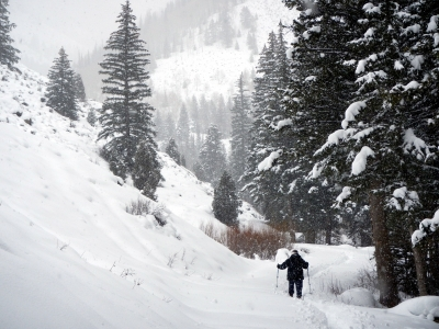 Snowshoeing along Left Fork Huntington Creek. Photo by Rich Warnick.