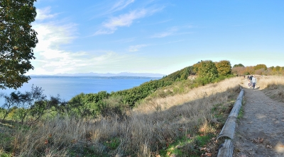 Panoramic view of Puget Sound and trail above the bluffs, Discovery Park. Photo by Joe Mabel/wiki.