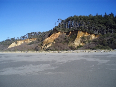 Gold Bluffs as seen from Gold Bluffs Beach. Photo by National Park Service.