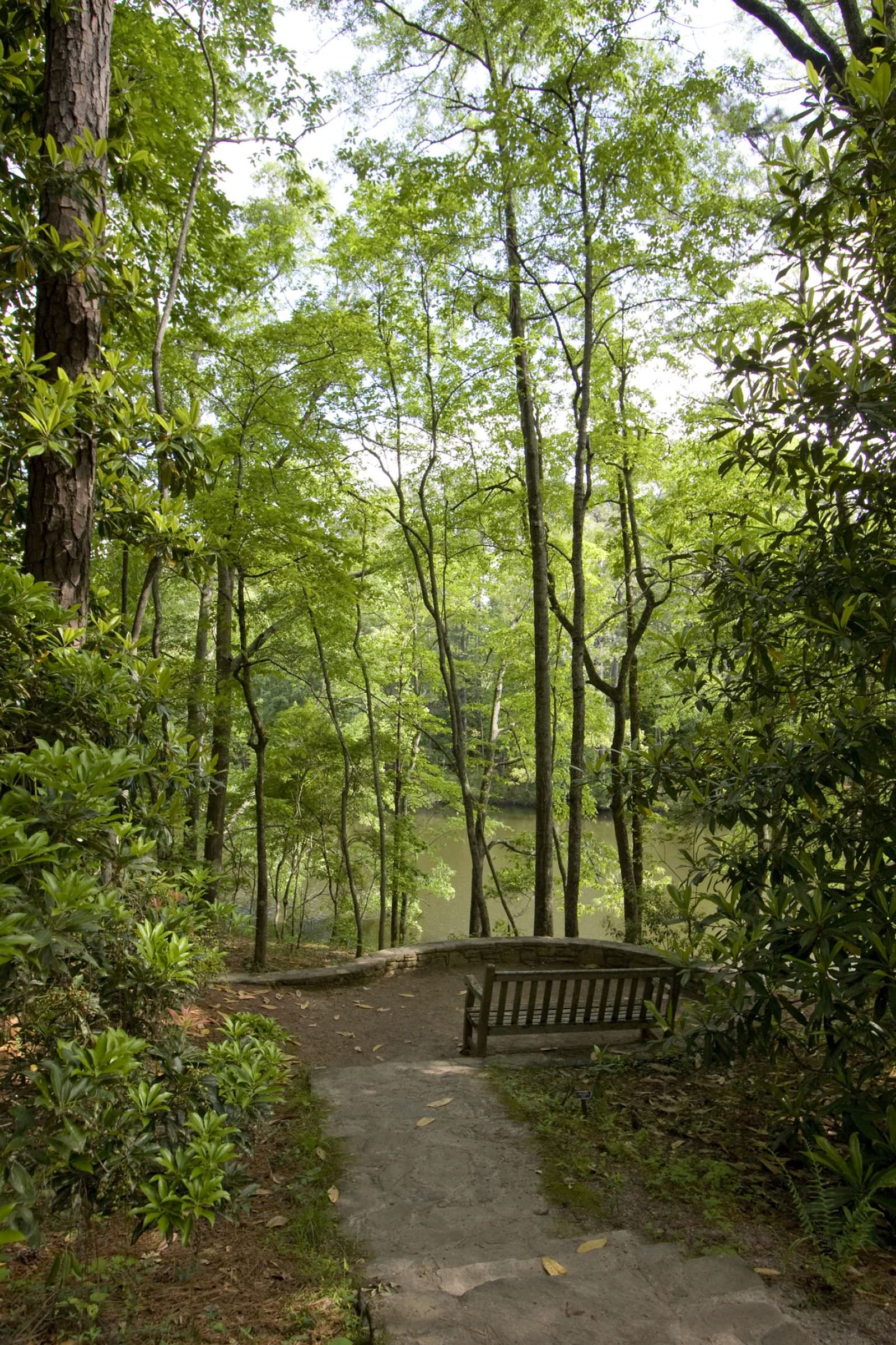 photo: Nature Trails at Callaway Gardens in Pine Mountain, Georgia
