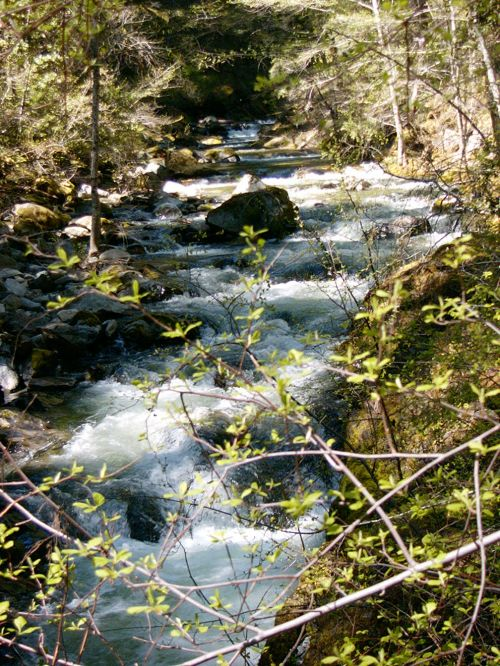 photo: Middle Fork of the Applegate River