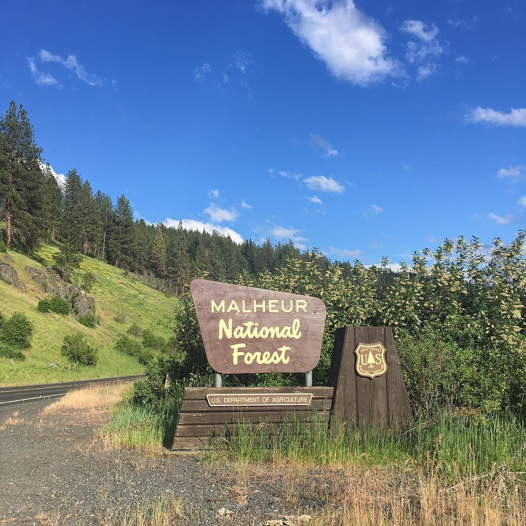 photo: Malheur National Forest Entrance. Photo by Evan p. Cordes wiki.