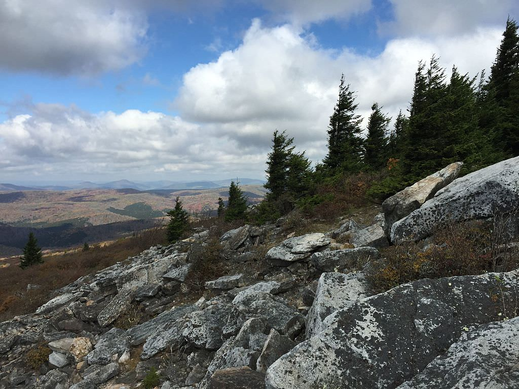 photo: View north from the Whispering Spruce Trail just west of Spruce Knob, West Virginia. Photo by Famartin.