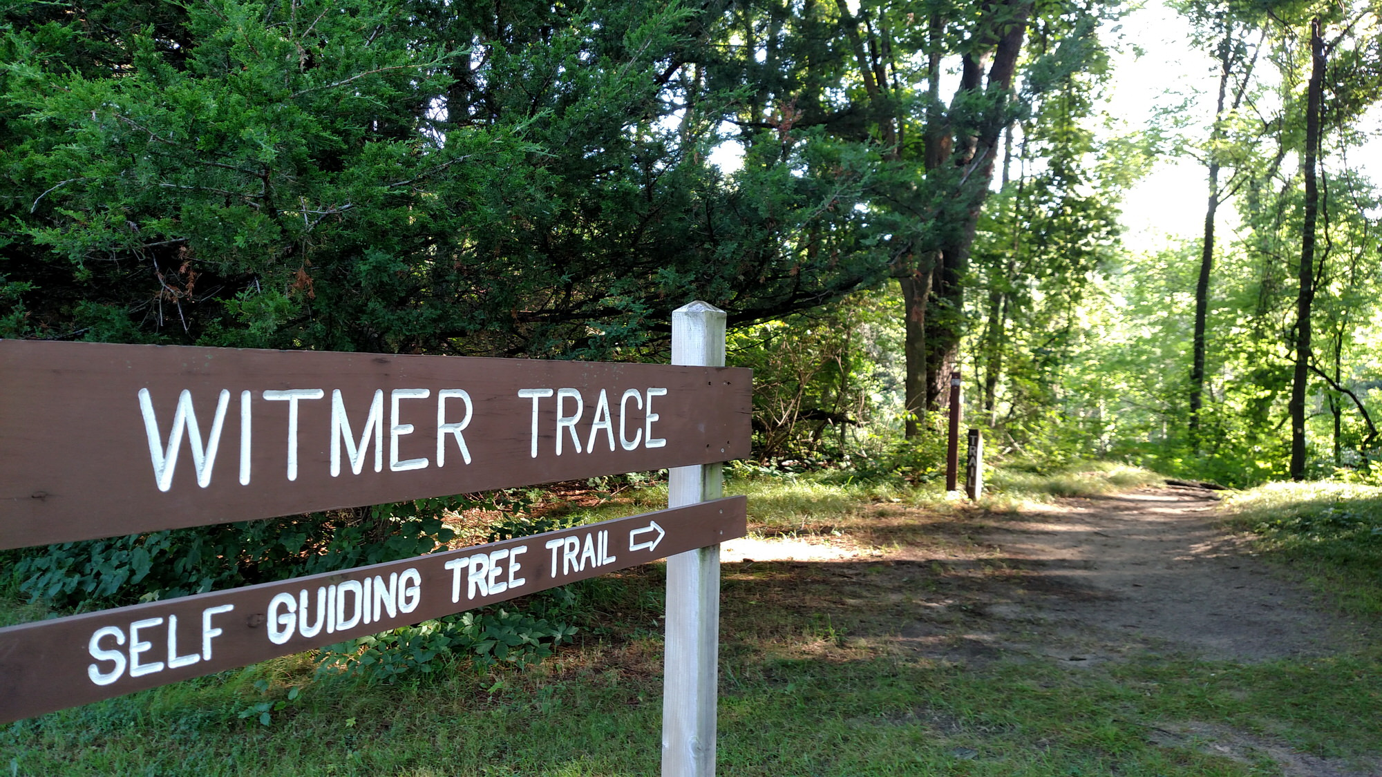 photo: Witmer Trace Self Guiding Tree Trail. Photo by Ronda DeCaire.