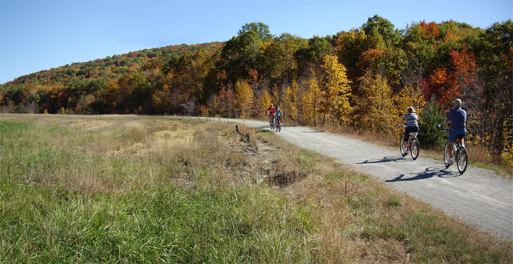 photo: Surface Reclamation. A mine dump formerly occupied this area. Photo by Mary Shaw.