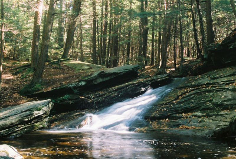photo: Buffum Falls on the Trail, in the Pelham Hills. photo by John Kowaleski