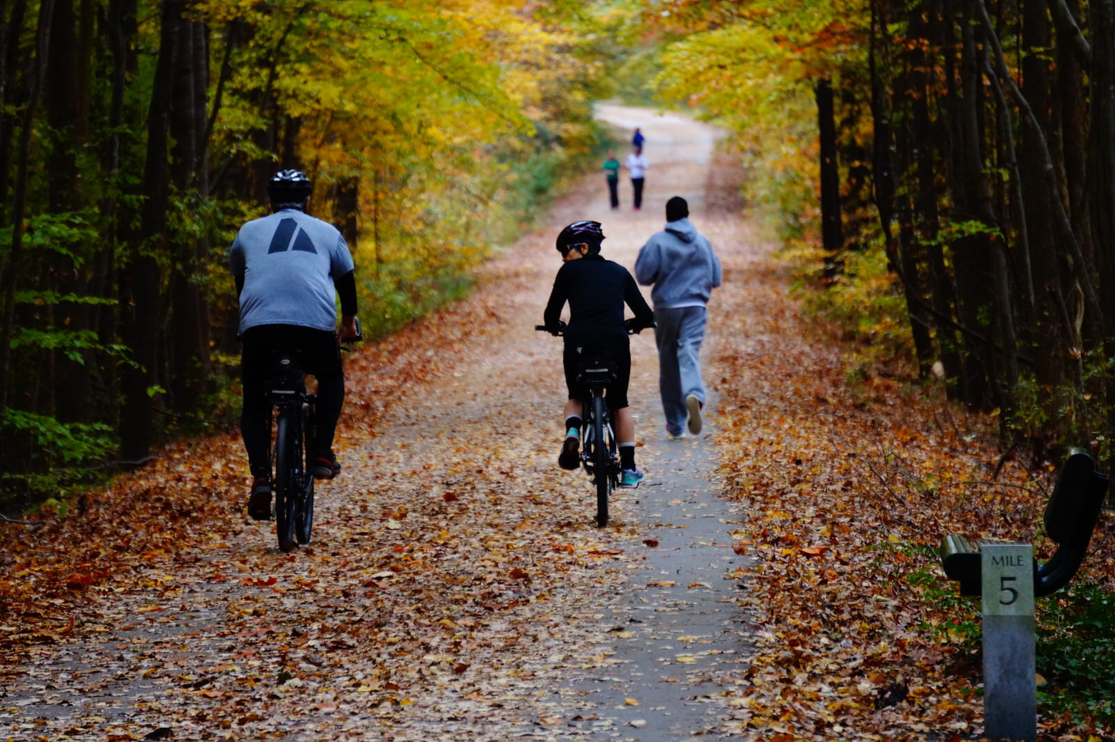photo: Bikers and walkers having fun on the trail. Photo by Sarina Lewis.