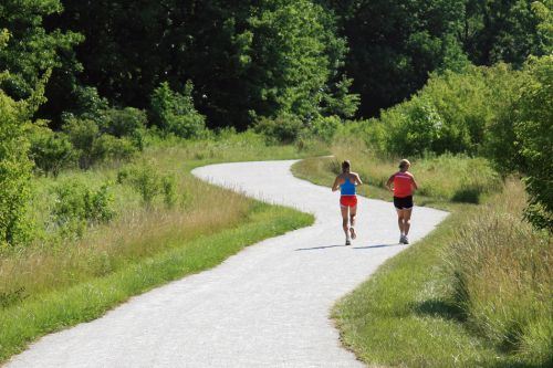 photo: A summer run along the Danada-Herrick Lake Regional Trail