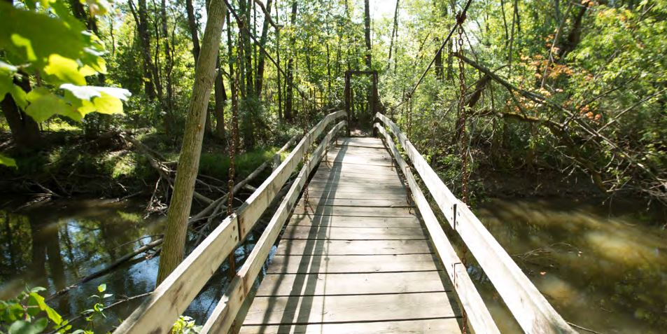 photo: A footbridge on the preserve grounds.