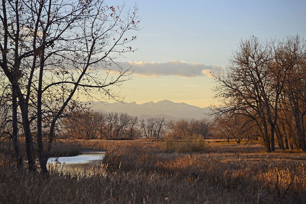 photo: Autumn at the Rocky Mountain Arsenal NWR. Photo by USFWS/Robert Blauvelt.