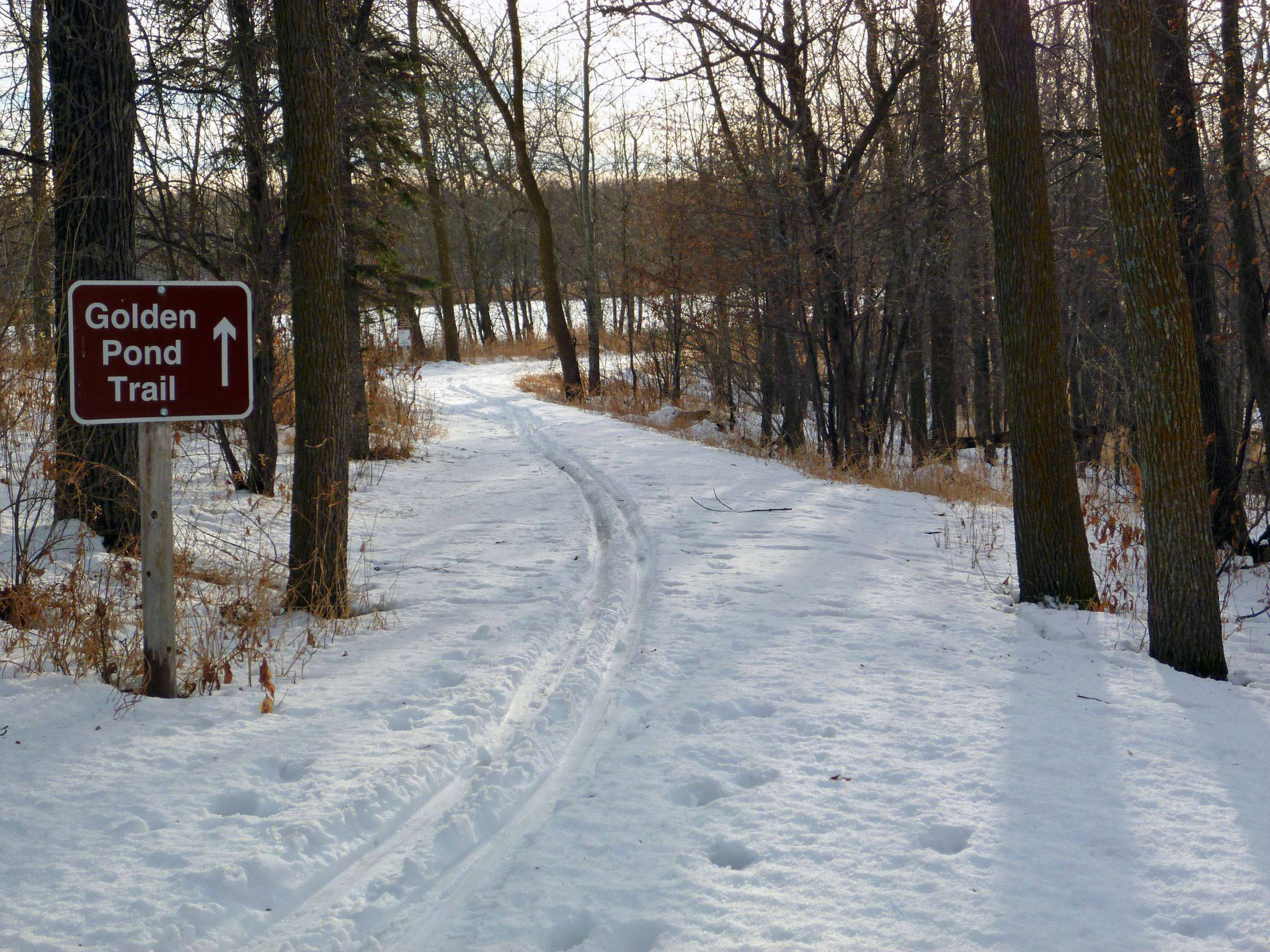 photo: Path  in winter at Rydell Refuge. Photo by USFWS.