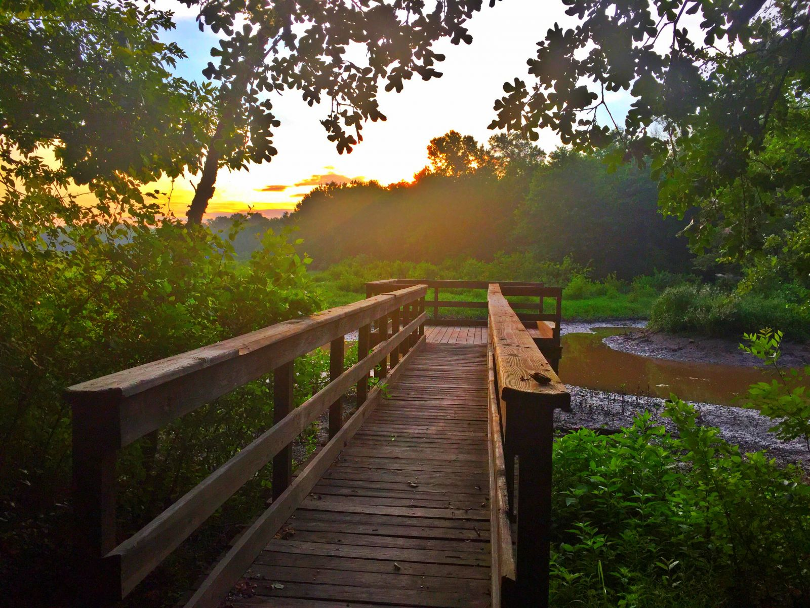 photo: The sun rises over the education dock on the Cussetah Bottoms Boardwalk Trail