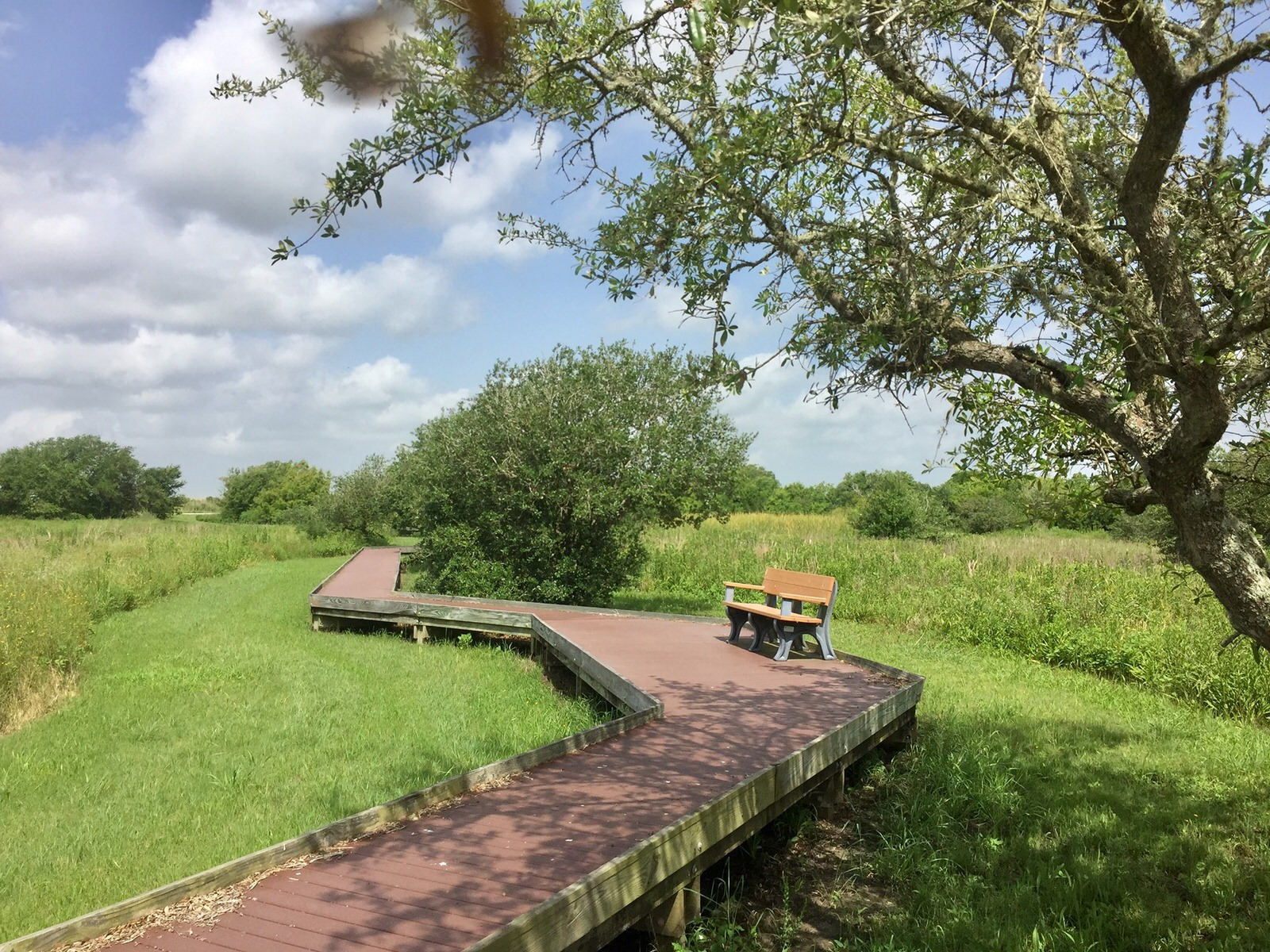 photo: Viewing bench. Photo by Anahuac NWR.