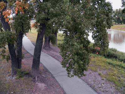 photo: THE EAST GRAND FORKS/GRAND FORKS GREENWAY TRAIL ON THE MINNESOTA SIDE OF THE RED RIVER (PHOTO BY STUART MACDONALD, 2007)