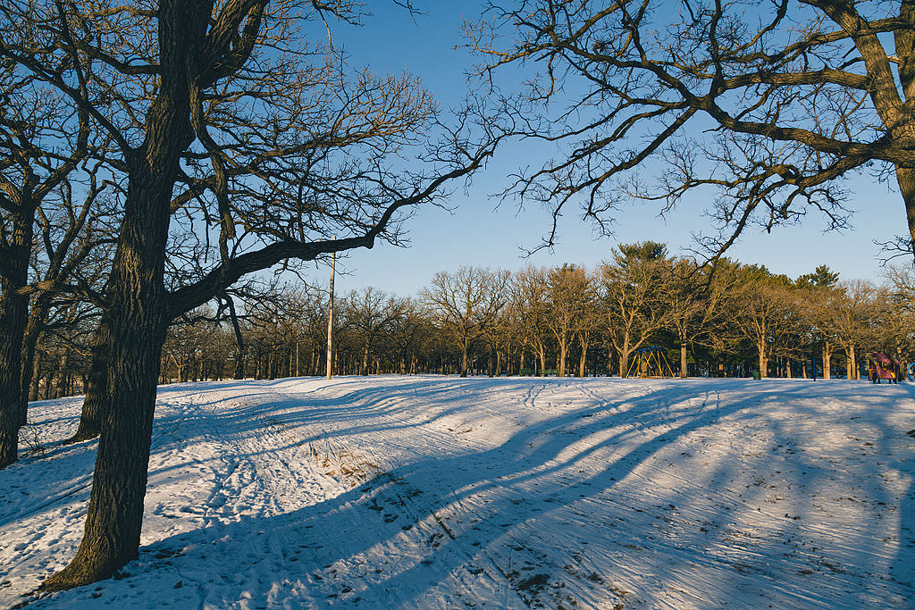 photo: Riverside Park ski trail. Photo by Tony Webster/wiki.